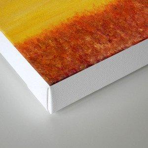 O-Giraffe Canvas Print