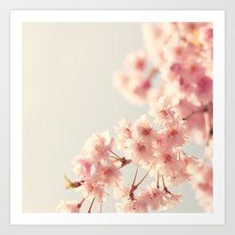 Les cerises du printemps Art Print