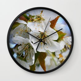 White Cherry Blossoms Wall Clock