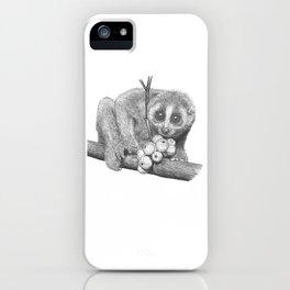 Slow Loris (Kera Duku) iPhone Case