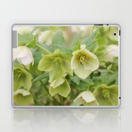 Lovely Lime Laptop & iPad Skin
