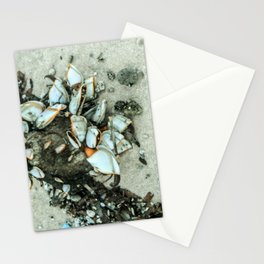 Sea Molluscs Stationery Cards