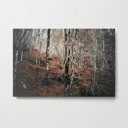 Woods calling Metal Print