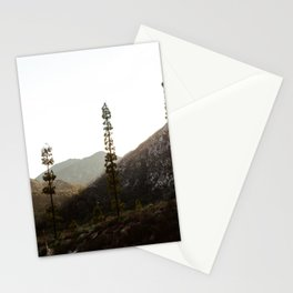 sunset in angeles crest forest Stationery Cards