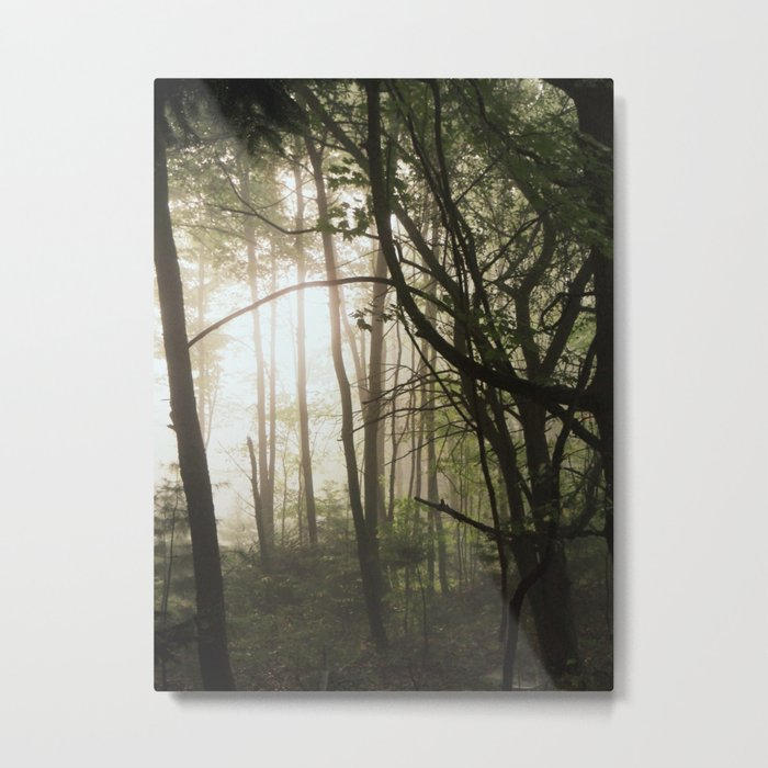 Find the Light in Dark Places Metal Print