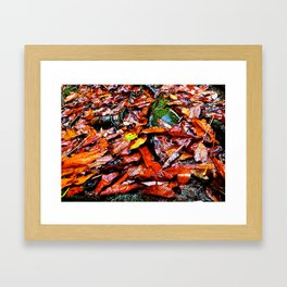 Fall, on a Rainy Day. Framed Art Print