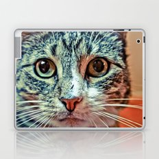 PRETTY KITTY Laptop & iPad Skin