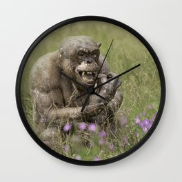 Jambo The Hairless Chimp Checking His Teeth Wall Clock