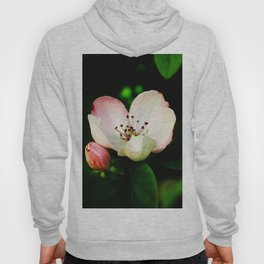 Quince Pink Flower and Bud Hoody