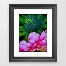 Seduction in a garden Framed Art Print