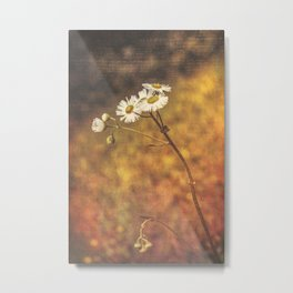 Don't Eat The Daisies Metal Print