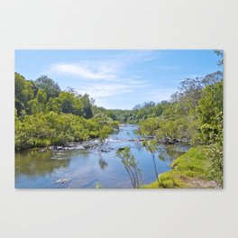 Beautiful tranquil river in the tropics Canvas Print