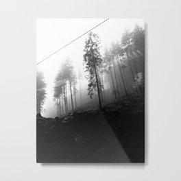 Swiss Trees Metal Print