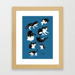 cat study Framed Art Print