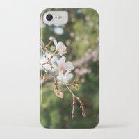 sakura iPhone & iPod Cases featuring sakura by artsimo