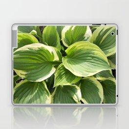 Hosta Plant Laptop & iPad Skin