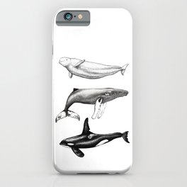 Beluga, humpback whale and orca killer whale iPhone Case