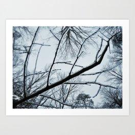 Little Ice Tree Art Print
