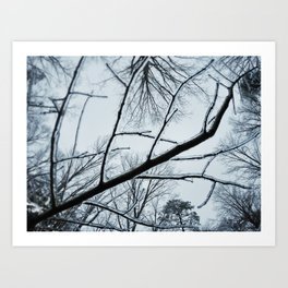 Little Ice Tree Art Print
