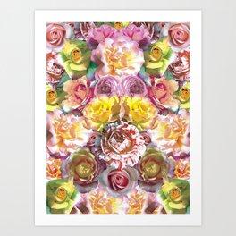 Rose Bloom Art Print