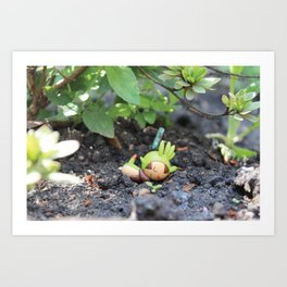 Sleeping Chespin Art Print