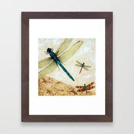 Zen Flight - Dragonfly Art By Sharon Cummings Framed Art Print