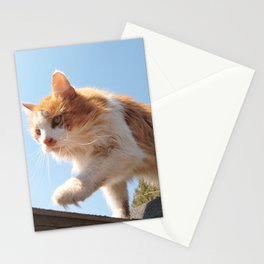 The Tiger is coming Stationery Cards