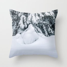 Beauty of Winter 16 Throw Pillow