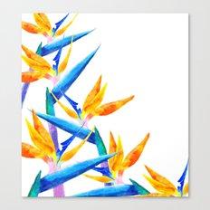 Bird of Paradise V2 Society6 #decor #buyart Canvas Print