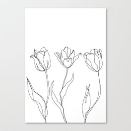 Botanical illustration line drawing - Three Tulips Canvas Print
