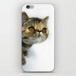 Piper iPhone Skin