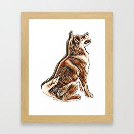 dog isolated japanese shiba Framed Art Print