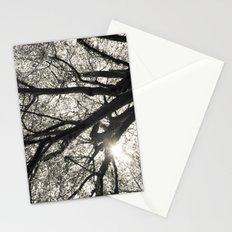 Sunlight through Hornbeam tree. Stationery Cards