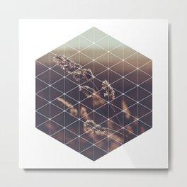 Hexagonal Barley - Sacred Geometry Metal Print