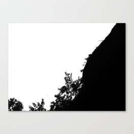 Deforestation Canvas Print