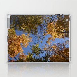trees in the air Laptop & iPad Skin