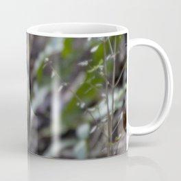 'South Island Robin' Coffee Mug