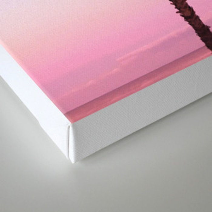 Stand out - twilight pink Canvas Print