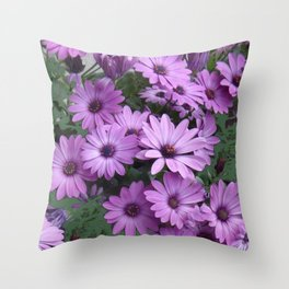 Lilac & Sage Color Purple Daisy Flowers Garden Throw Pillow