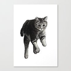 Jumping Cat Canvas Print
