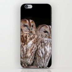 Tawny Owls in Nature iPhone & iPod Skin