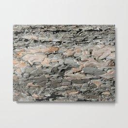 Tree Bark Metal Print