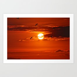 Red Sunset2 False Bay Art Print
