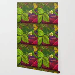 Wild Strawberry Plant Wallpaper