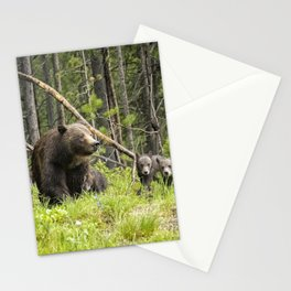 Charting the Course - Grizzly 399 with Her Four Cubs Stationery Cards