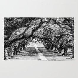 Louisiana Path Through the Oaks Rug