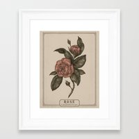 roses Framed Art Prints featuring Roses by Jessica Roux