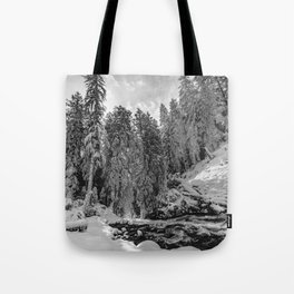 Oregon Adventures Black and White - Nature Photography Tote Bag