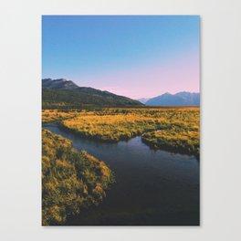 Potter Marsh 3 Canvas Print