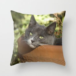 Here's Looking at YOU, Kid! Throw Pillow